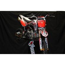LXR-RR 2013