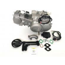 motore zs 110