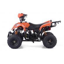 LEFT FOOTREST MINI ATV ADVENTURE 110