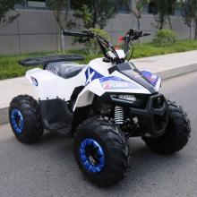 mini quad explorer 110