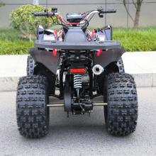 mini quad Sportmax 125