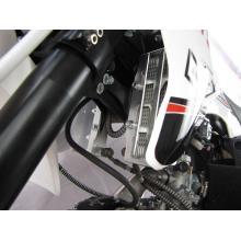 Pitbike LXR 155  PitsterPro