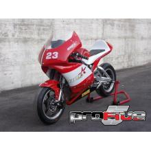 MiniGP 150cc PROfive - IMR